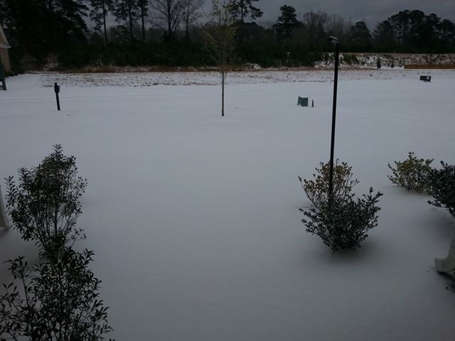 Photo: So - This is North Carolina - Today!