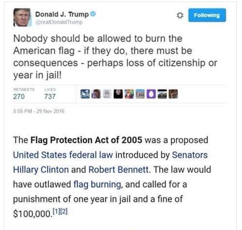 flagprotectionact2005
